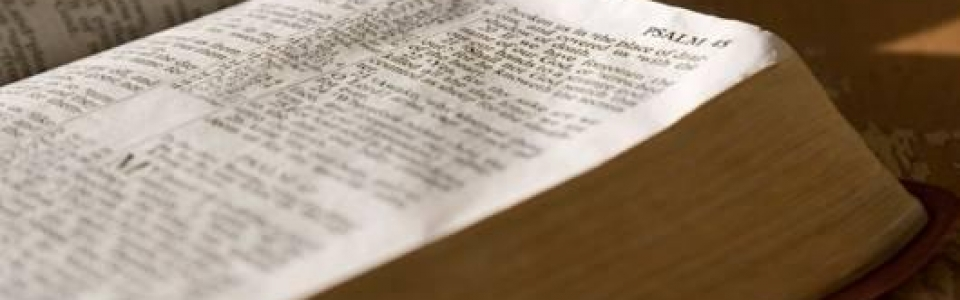 biblia_baner